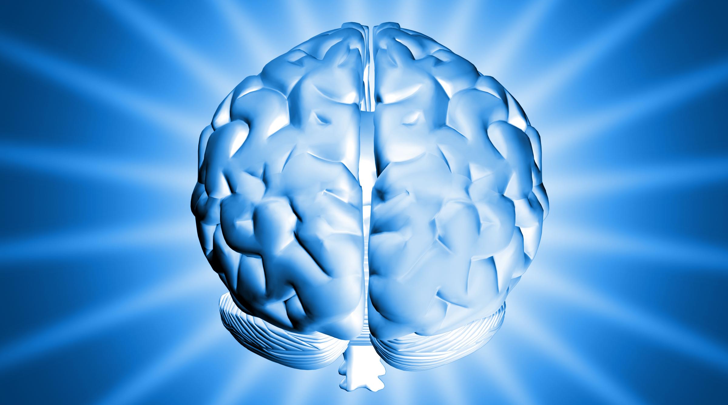 Lidský mozek