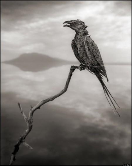 Oběť slaného jezera v Tanzánii