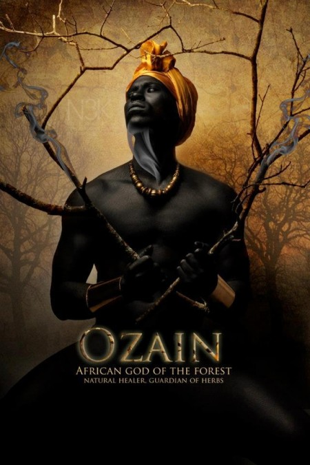 Nigerijští bohové