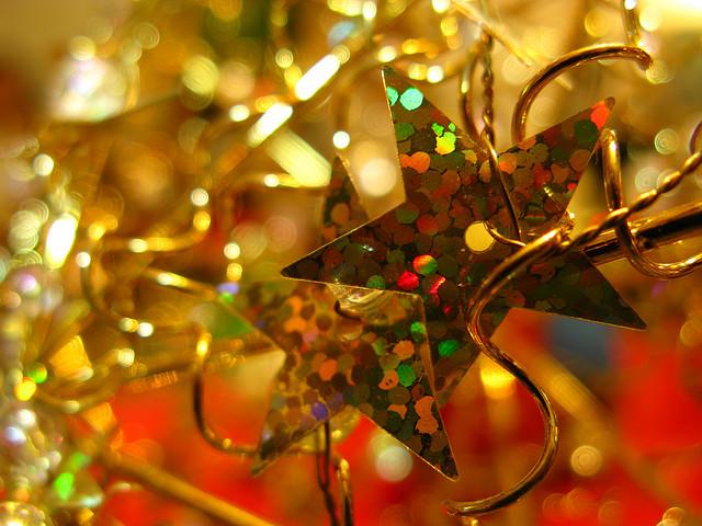 Vánoční hvězdy | Zdroj: flickr.com | Copyright: Luz Adriana Villa A.